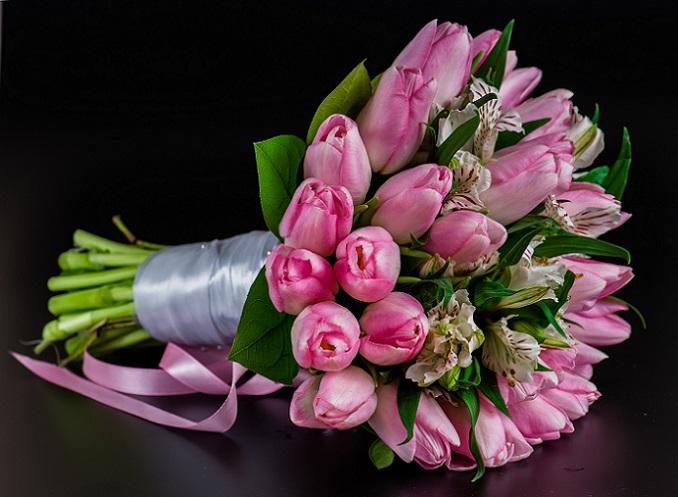 Auch die Tulpe steht für die Liebe und die Zuneigung. Je dunkler die Blütenfarbe, desto stärker die Zuneigung. (#04)