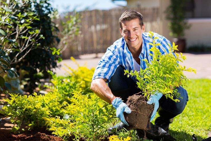 Die Männer pflanzen einen kleinen Baum vor das Fenster der Angebeteten.(#04)