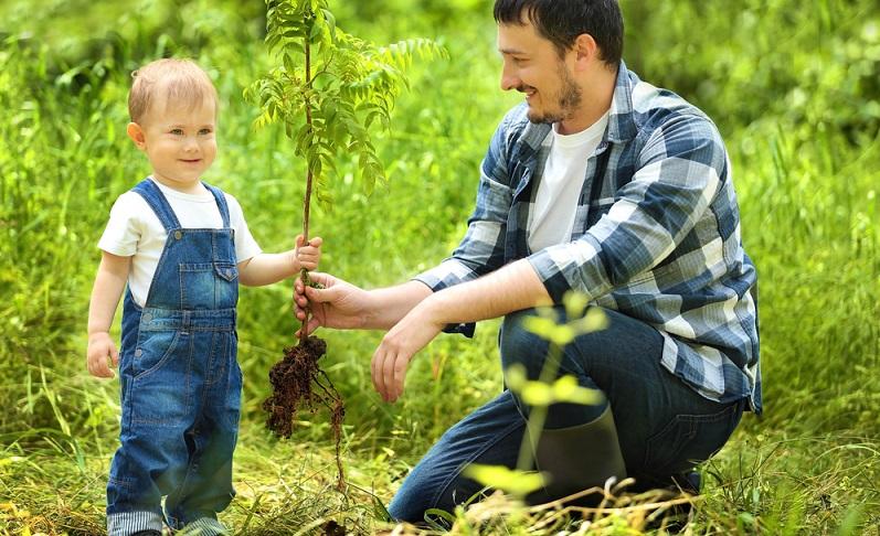 Es gibt einige Bräuche, die sollten nicht nur der Taufe vorbehalten bleiben. Dazu gehört das Pflanzen eines Taufbäumchens.(#05)