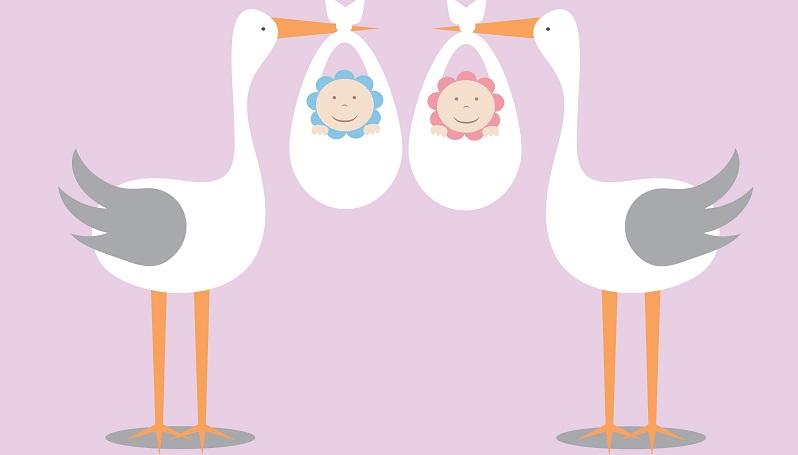 Der Storch ist schon Kindern als Symbol für die Geburt eines Babys bekannt und heute hat es sich durchgesetzt, dass Freunde oder Verwandte im Garten der Familie, die Nachwuchs bekommen hat, einen Storch aus Holz aufstellen. (#03)