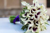 Brautstrauß mit Calla: Ideen für eine tolle Blume