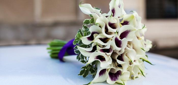 Brautstrauß mit Calla: Ideen für eine der sinnlichsten Blumen