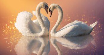 Ewige Treue: Wieso es Selbstbetrug ist und 5 Tipps, wie wir ewige Treue doch erhalten. (Foto: Shutterstock-_Ira Kalinicheva )